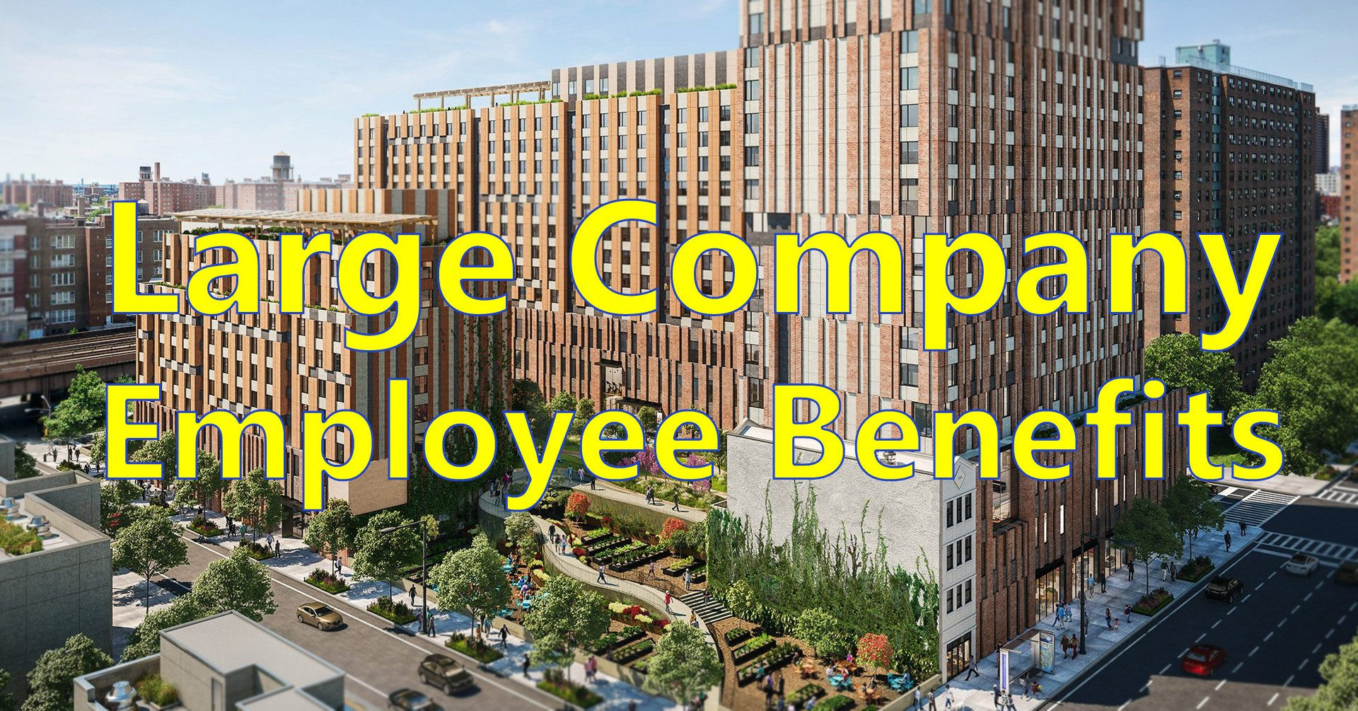 Large company employee benefits