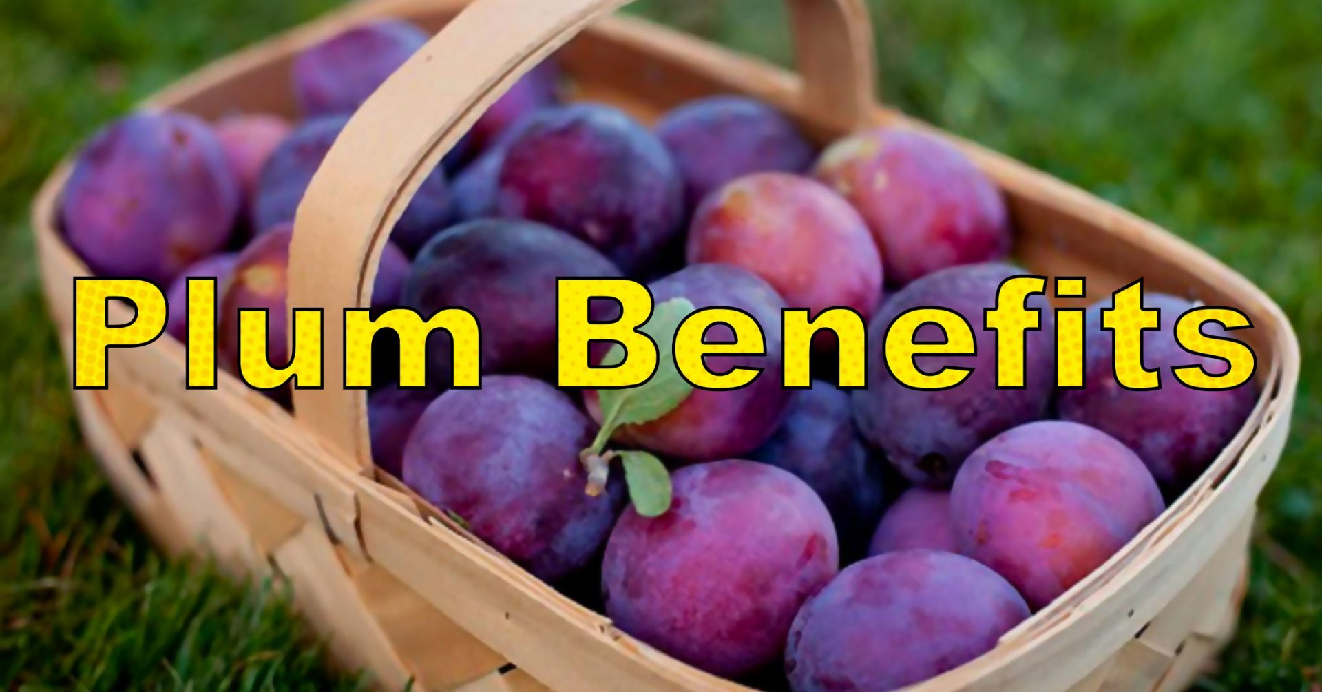 Plum Benefits - Health and Wellness